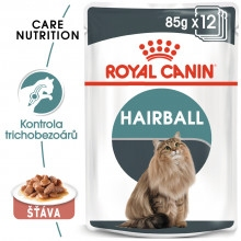 RC  Hairball Care Gravy 85g